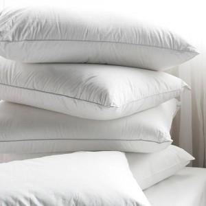 natural-pillow-goose-feather-large
